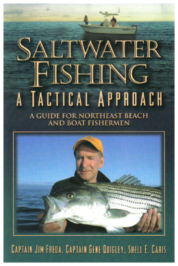 Saltwater Fishing - A Tactical Approach